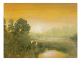 Wetlands Giclee Print by Robert Holman
