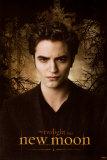 Twilight sága: Nový měsíc / New Moon, 2009 (filmový plakát vangličtině) Obrazy