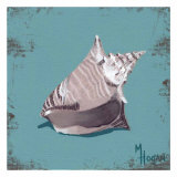 Distressed Seashells: Conch Print by Melody Hogan