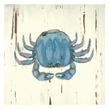 Blue Crab Posters by Grace Pullen