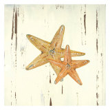 Starfish I Prints by Grace Pullen