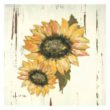 Sunflower I Prints by Grace Pullen