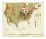 Geological Map of the United States, c.1856 Prints by Henry Darwin Rogers