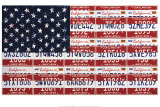 USA License Flag Print by Brady Barker