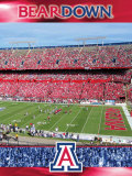 The University of Arizona-Stadium Shot Photo