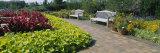 Plants in a Botanical Garden, Circle Garden, Chicago Botanic Garden, Glencoe Photographic Print by  Panoramic Images