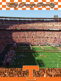 University of Tennessee-Stadium Shot Photo