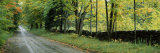 Road Passing Through a Forest, Caledonia County, Vermont, USA Photographic Print by  Panoramic Images