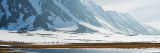 Snow Covered Mountains, Bellsund, Spitsbergen, Svalbard Islands, Norway Photographic Print by  Panoramic Images