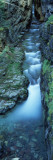 Water Flowing Through Rocks, Sunrift Gorge, Us Glacier National Park, Montana, USA Photographic Print by  Panoramic Images