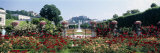 Flowers in a Formal Garden, Mirabell Gardens, Salzburg, Salzkammergut, Austria Photographic Print by  Panoramic Images