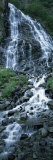 Waterfall in a Forest, Horsetail Falls, Valdez, Alaska, USA Photographic Print by  Panoramic Images