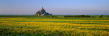 Mont Saint Michel Normandy France Photographic Print by  Panoramic Images