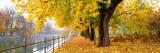 Autumn Scene Munich Germany Fotografisk trykk av Panoramic Images,