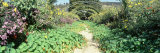 Walkway in a Garden, Claude Monet Garden, Giverny, France Photographic Print by  Panoramic Images