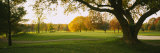 Trees on a Golf Course, Westwood Country Club, Vienna, Virginia, USA Photographie par  Panoramic Images