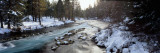 Metolius River Jefferson County, OR Fotografie-Druck von  Panoramic Images
