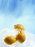 Three Lemons Frozen in Ice Below Ice Blue Sky Photographic Print