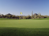 Golf Flag in a Golf Course, Troon North Golf Club, Scottsdale, Maricopa County, Arizona, USA Photographic Print