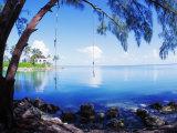 Rope Swing over Water Florida Keys Florida, USA Photographic Print
