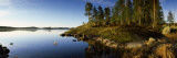 Trees at the Lakeside, Saimaa, Puumala, Southern Savonia, Eastern Finland, Finland Photographic Print by  Panoramic Images