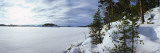 Trees Along a Frozen Lake, Saimaa, Puumala, Southern Savonia, Eastern Finland, Finland Photographic Print by  Panoramic Images