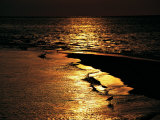 Sunset over the Kapalai Lagoon Photographic Print by Andrea Ferrari