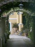 Lanterns Hanging in a Garden, Capri, Naples, Campania, Italy Photographic Print