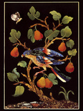 Panel with Parrot on Pear Tree Stampa giclée