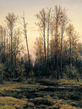 Spring Forest Reproduction proc&#233;d&#233; gicl&#233;e