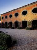 Villa Grabau Photographic Print by  Michelangelo Buonarroti