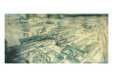 The Breda Plant Giclee Print