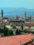 View of the Old City Centre of Florence Photographic Print