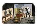 Farmers Pressing Apples to Make Cider, 1800s Giclee Print