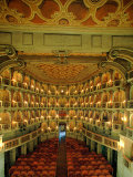 "Bibiena Theater known as the ""Scientifico"" Photographic Print"