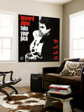 Howard Alden - Take Your Pick Wall Mural
