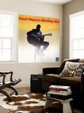 Chuck Wayne - Morning Mist Nástěnný výjev