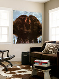 Flora Purim - Butterfly Dreams Wall Mural