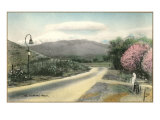 El Camino Real, California Posters