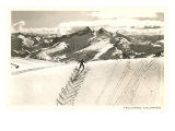 Herringbone Ski Track, Telluride, Colorado Poster