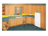Modern Kitchen with Wood Cabinets Posters