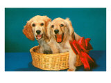 Spaniel Puppies in Basket with Red Bow Posters