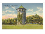 Rockford Park Water Tower Print