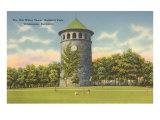 Rockford Park Water Tower Print