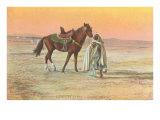 Arab Horseman Posters