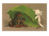 Dachshund Puppies Under Umbrella with Kitten Posters