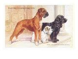 Boxer, Sealyham, Cocker Spaniel Posters