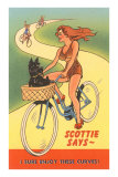 Enjoy Curves, Scottie in Bicycle Basket Fotografa
