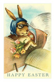 Rabbit in Goggles and Vintage Airplane Posters