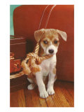 Puppy with Noose Posters